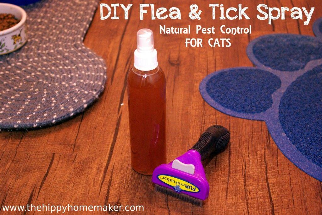 Diy Flea Tick Spray For Cats Natural Flea Tick Prevention For Cats Thehippyhomemaker Flea And Tick Spray Tick Spray Flea And Tick