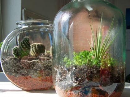 Anleitung für einen Flaschengarten, mit Aktivkohle. | Terrarium ...