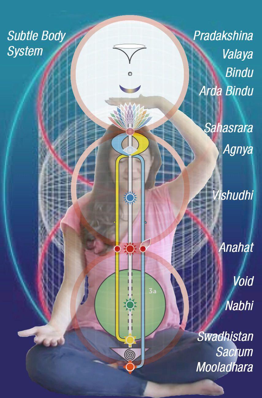 11 Chakra levels Subtle Body System - artwork by pavan - courtesy ...
