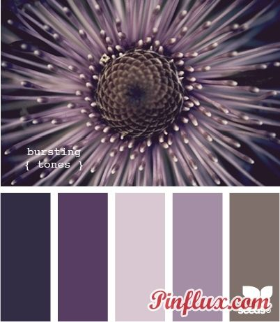 Awesome color pallet for a girls room!: paint colors