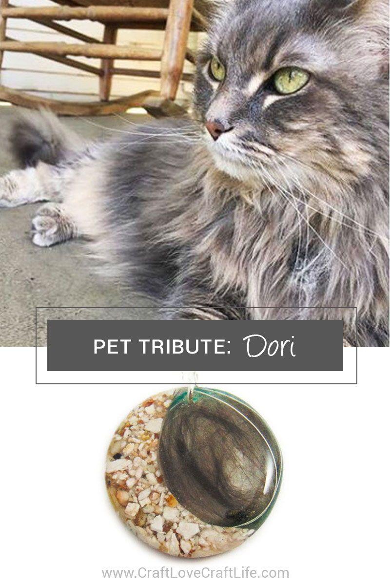 Dori Memorial Tribute Cat memorial, Pets, Losing a pet