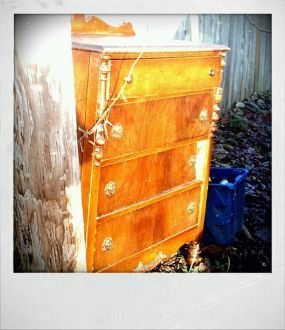 My Alley Crawling Find! Antique Dresser ready for the landfill has a new purpose!