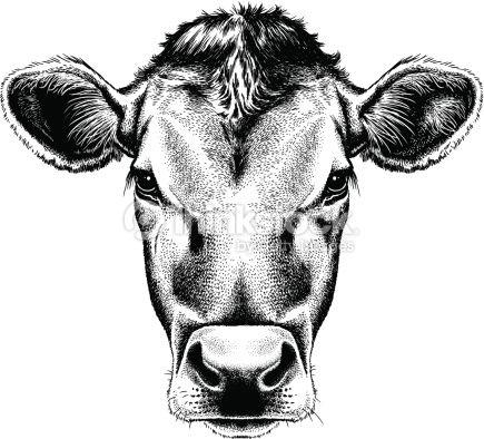 Dairy Cow Illustration
