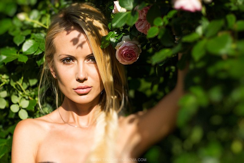 http://www.tinacherkasova.com/