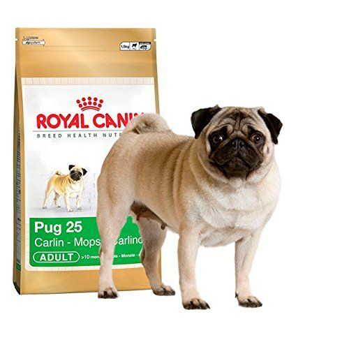 Royal Canin Pug Complete Adult Dry Dog Food 33 Pounds 15kg Visit The Image Link More Details Note Amazon Affiliate Link