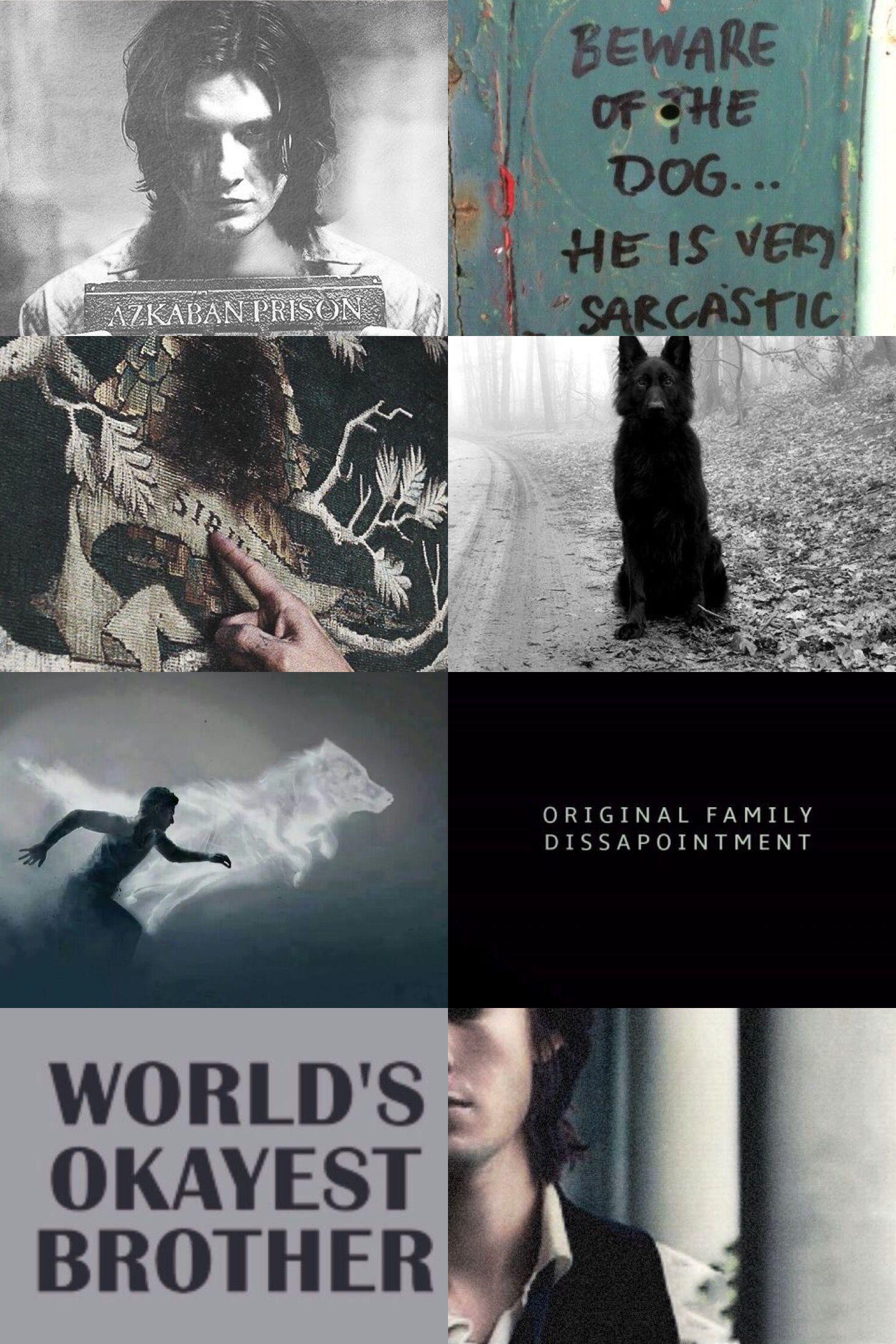 Sirius black aesthetics                                                                                                                                                                                 More