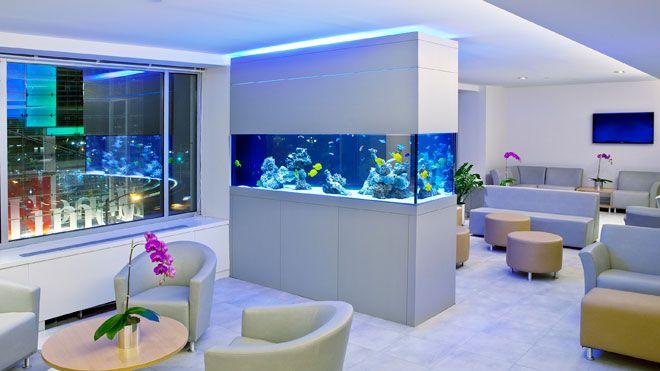 Decorar con acuarios y peceras sala tv pinterest acuario peceras y interiores - Pecera de pared ...