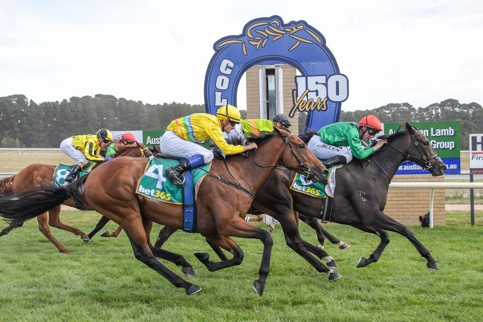 Watch Live Horse Racing From The Racing TV Stream in HD in