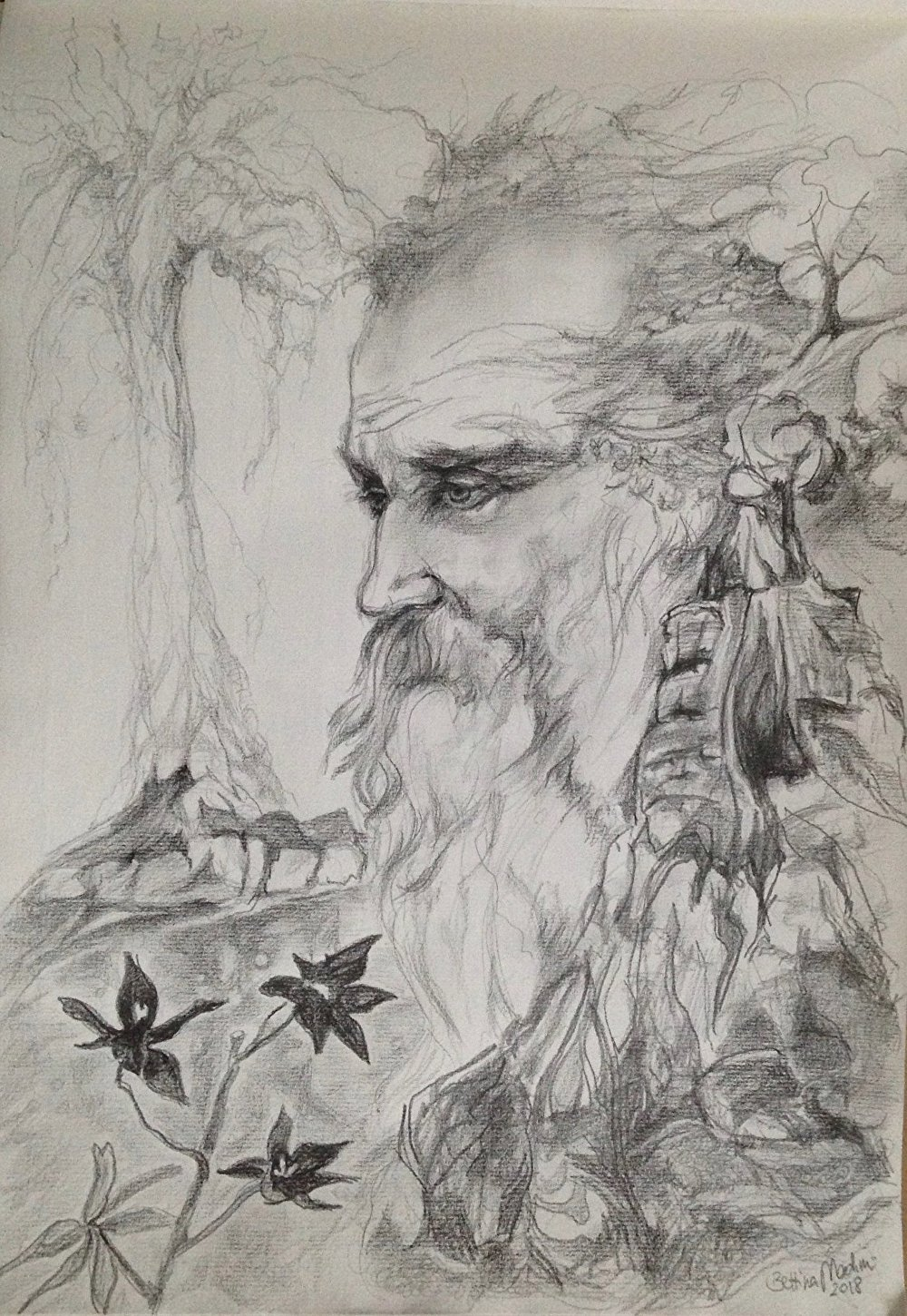 John Muir's Vision by Bettina StarRose Black and white