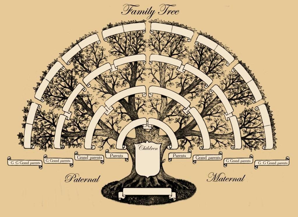 генеалогическое дерево раскраска | Genealogía