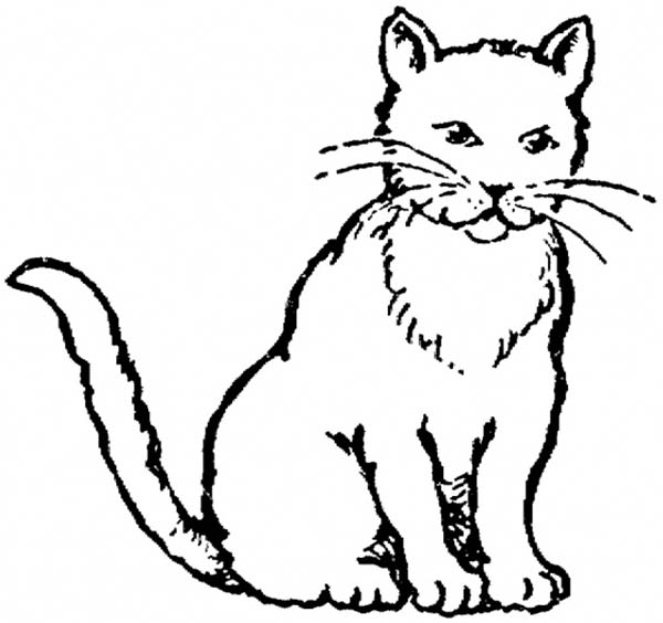 A Realistic Drawing Of Kitty Cat Coloring Page : Kids Play ...