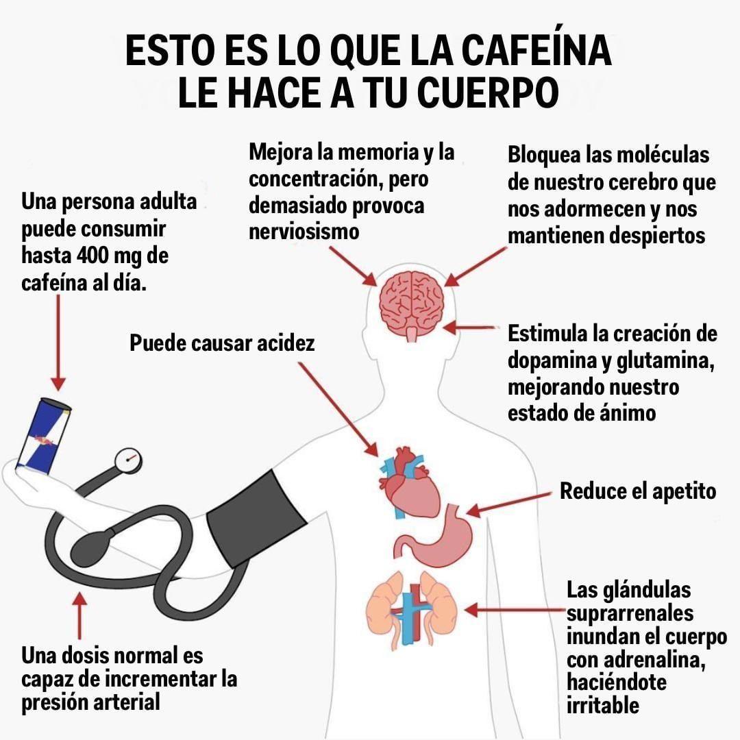 estimulante del apetito cafeína
