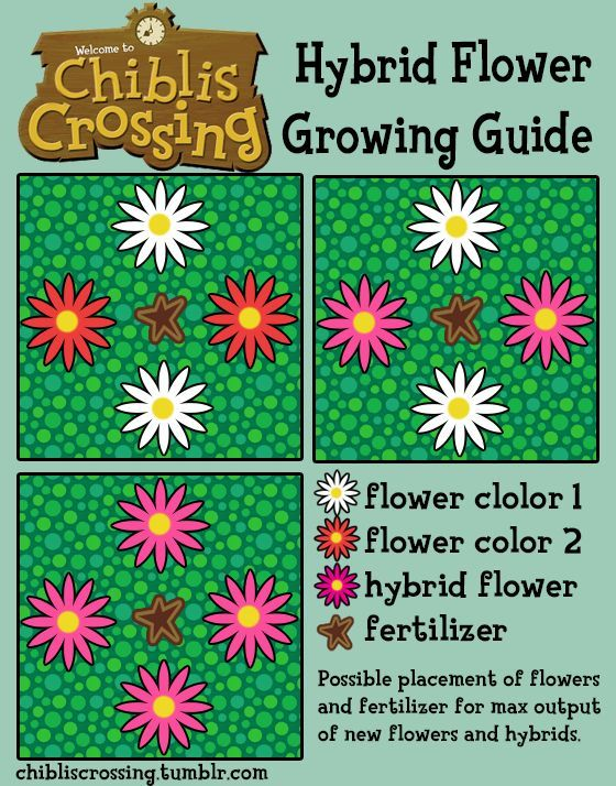 A Good Tip For Using The Fertilizer For Growing Hybrids Acnl Tips