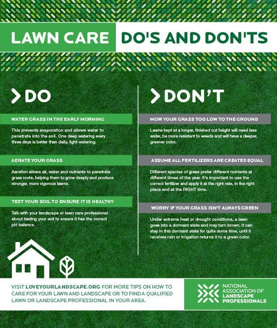 Must Know Lawn Care Do S And Dont S Lawn Care Lawn Care