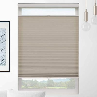 Classic Light Filtering Cordless Top Down Bottom Up Cellular Shades Light Filtering Shades Shades Blinds Cellular Shades
