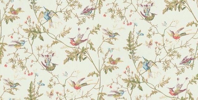 Humming birds wallpaper by wallpaperdirect bird wallpaper for home