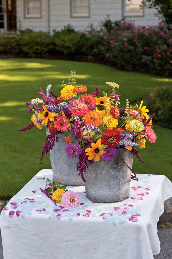 What Flower Seeds You Need To Buy For Creating An Annual Cut
