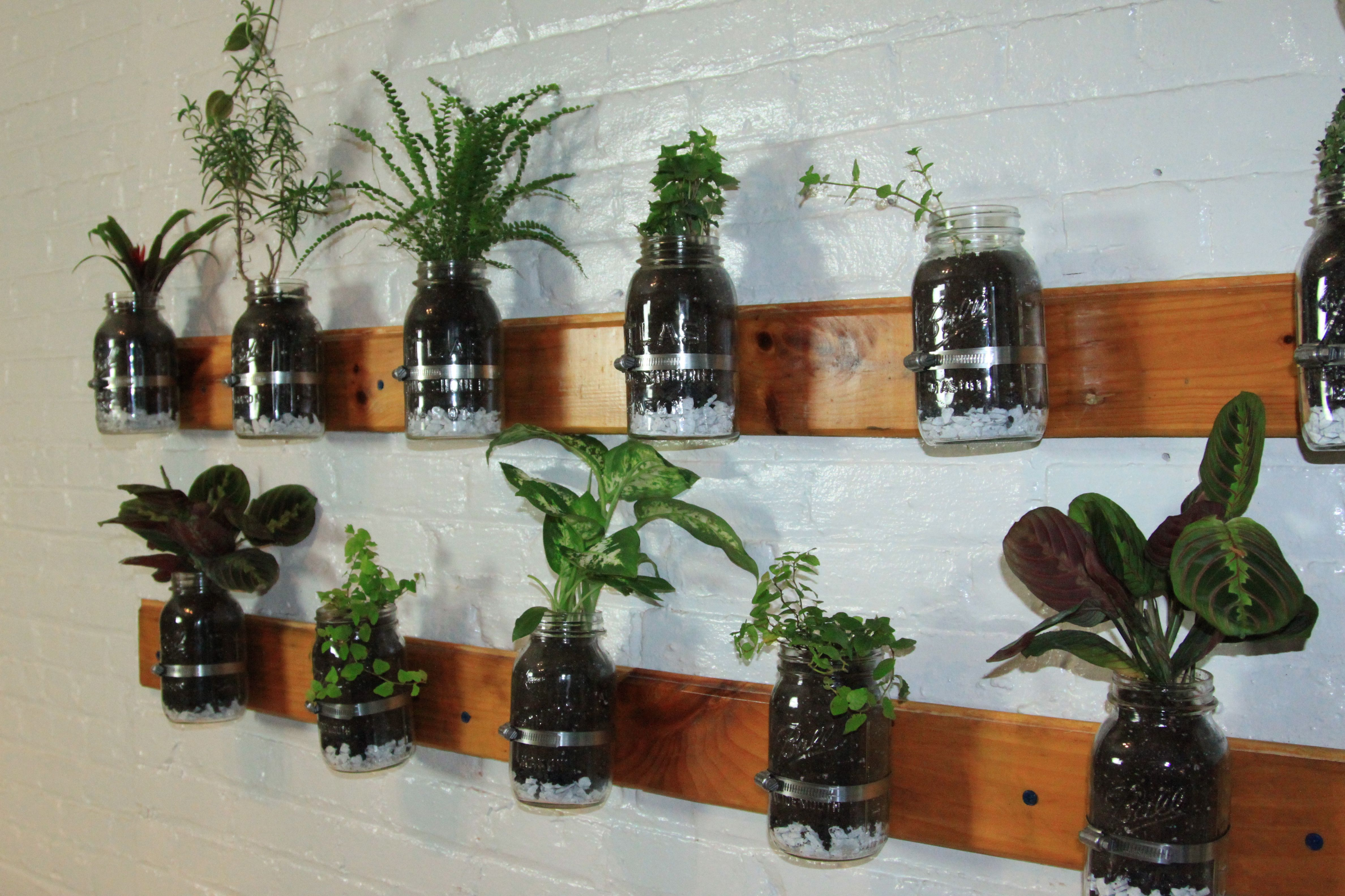 Diy Trend Kruidentuin : Een leuke trend de indoor kruidentuin het ziet er gezellig uit