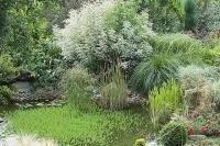Leçon de météo - Tirer parti de l'humidité dans son jardin