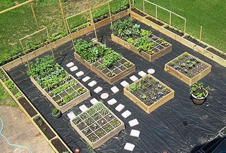 7 Tips for a HighYield Vegetable Landscape Also When Youre Limited on Room