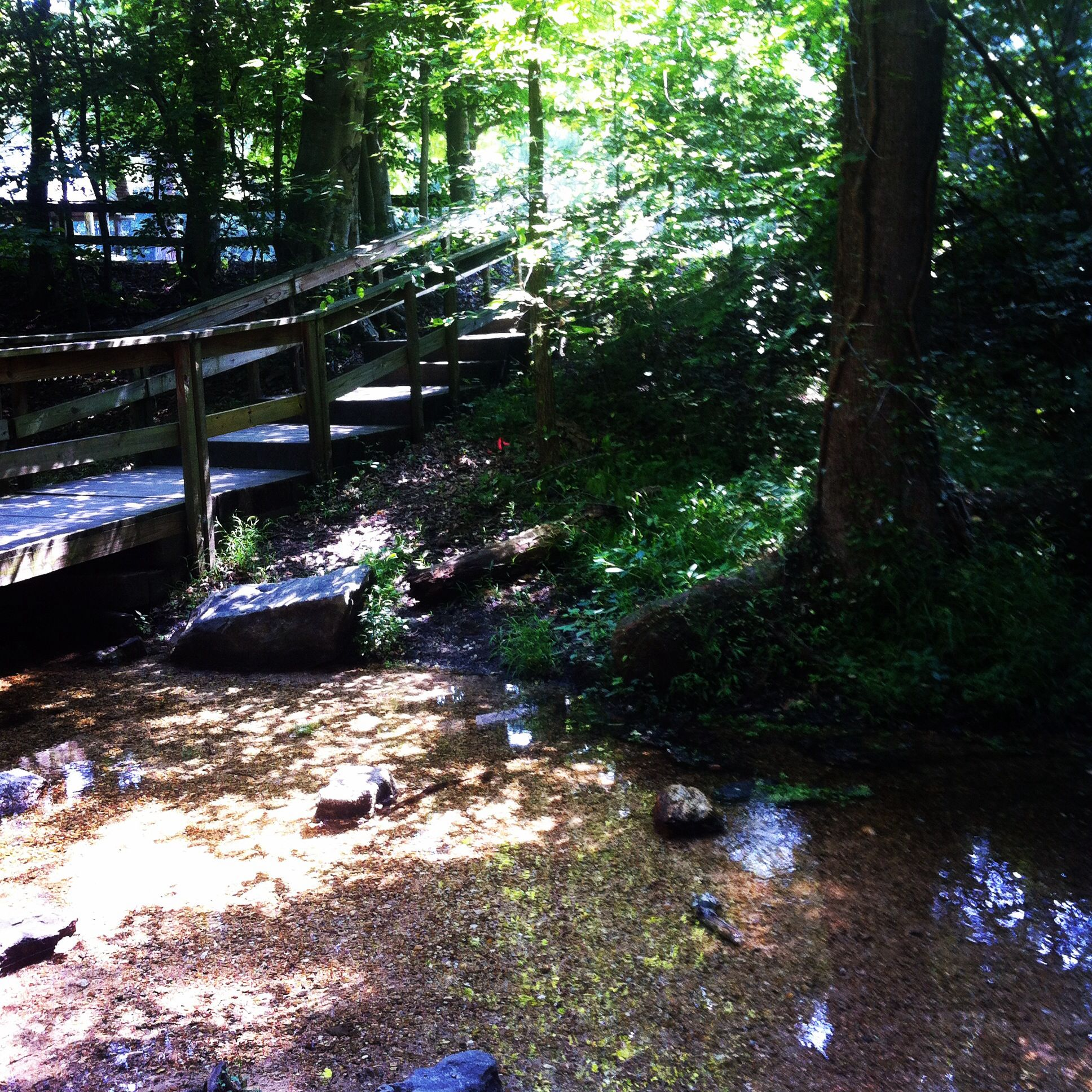 Blue hole creek red clay state park hikes weve done blue hole creek red clay state park publicscrutiny Image collections