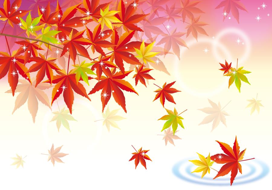 フリー イラスト紅葉の落ち葉と水の波紋 秋 紅葉 フリーイラスト 秋