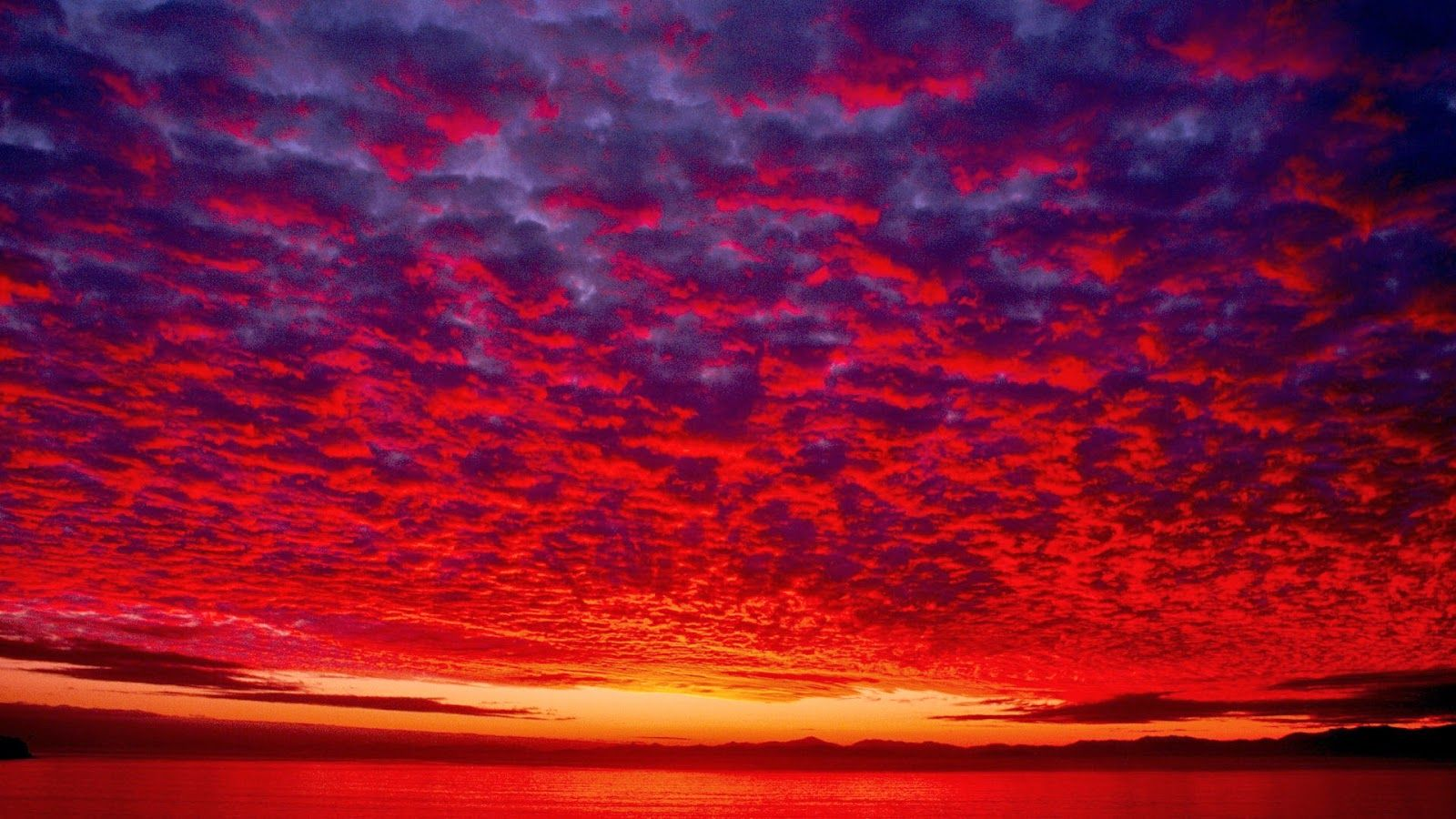 Bleeding Yankee Blue Red Sky At Night In 2019 Night