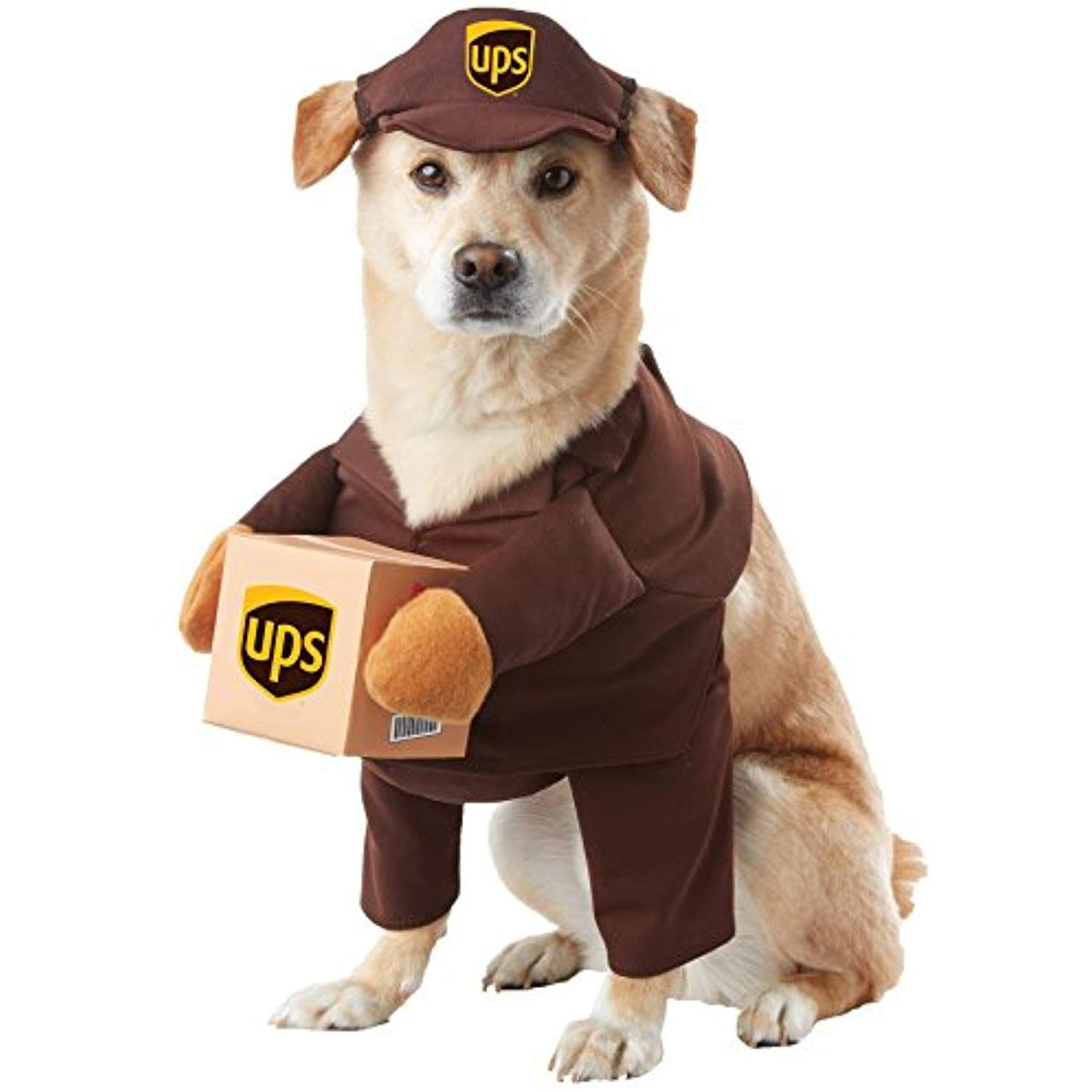 Uhc Ups Pal Outfit Funny Theme Puppy Fancy Dress Halloween Pet Dog