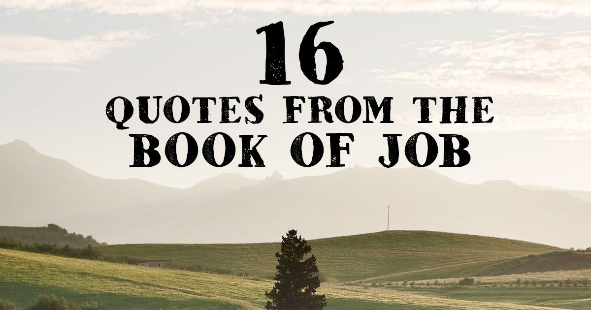 16 Quotes From The Book Of Job Famous Bible Scriptures