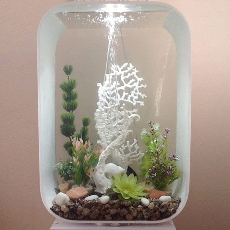 Biorb deco by KarenE. & Biorb deco by KarenE.. | Aquarium/Terarium/Koi Pond/etc | Pinterest ...