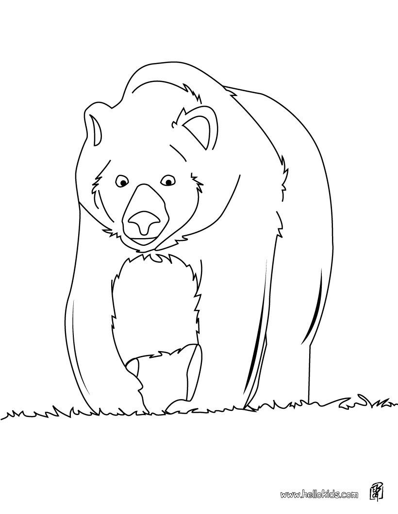 Big brown bear coloring page. More Forest Animals coloring sheets on ...