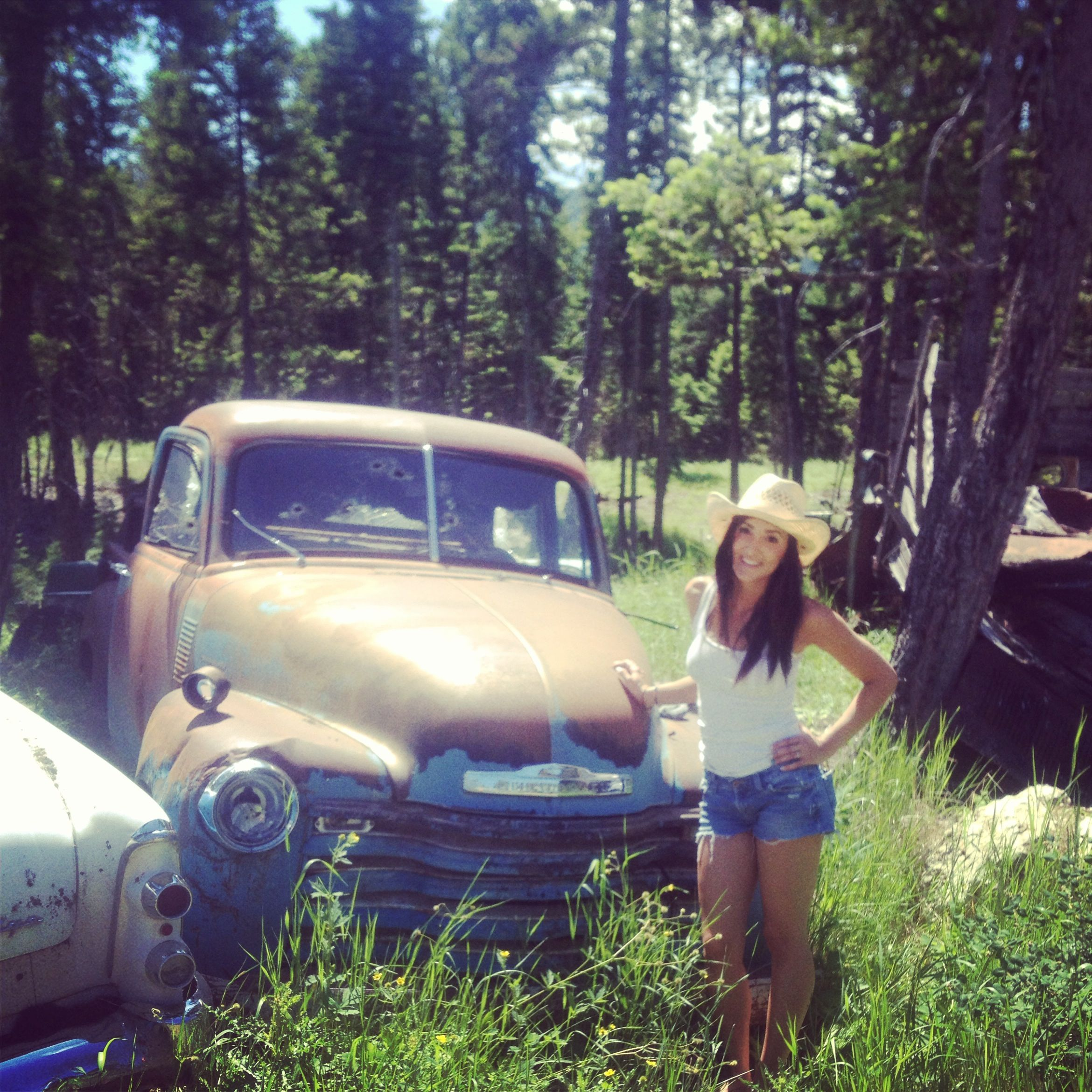 Old Junk Yard Chevy.