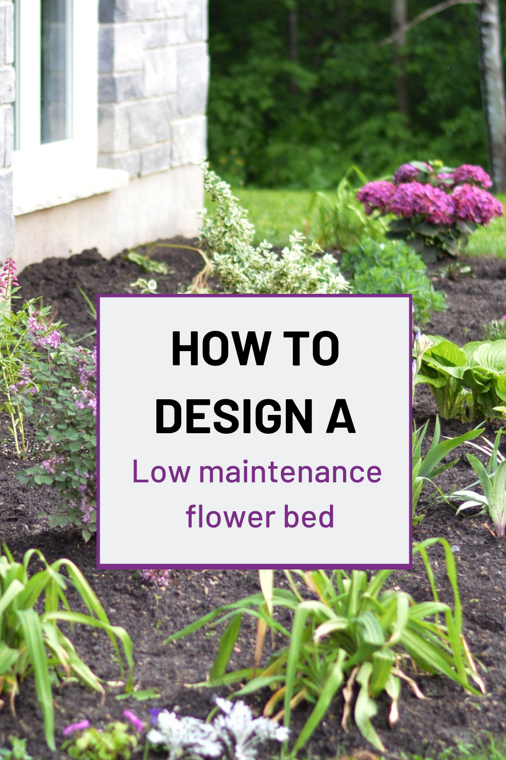 5 tips to design and plant a low maintenance flower bed