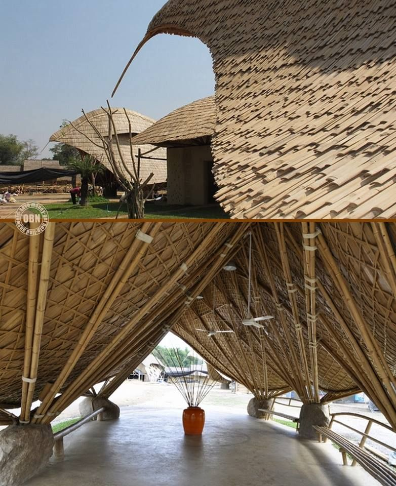 You 39 ll want to go back to school after seeing this bamboo for Adobe roof