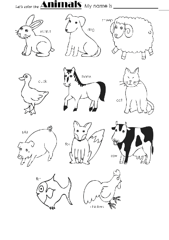 Animals Color Color Activities Learn Portuguese Coloring Pages