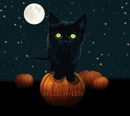 Jack Payne Wallpaper: Little Kitty - Happy Halloween!