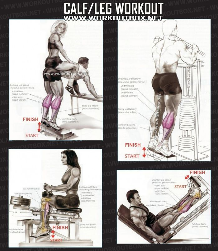 Image Result For Leg Workout For Massa