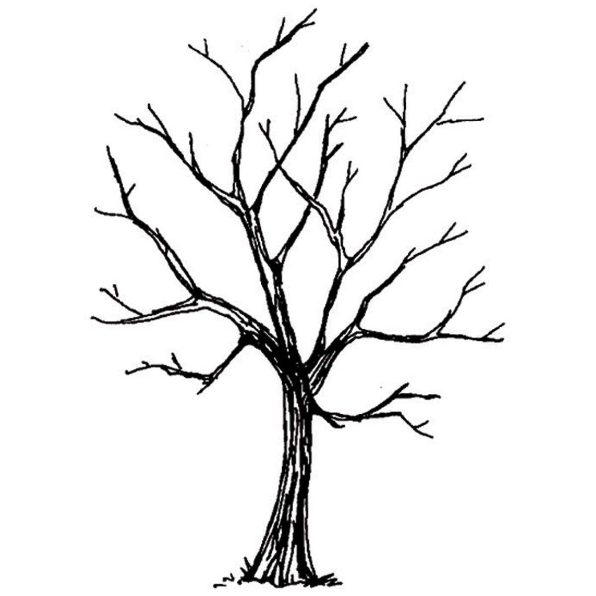 Art Impressions Wilderness Series Cling Rubber Stamp Tree