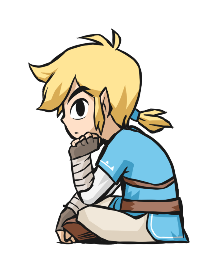Breath Of The Wild Toon Link In 2020 Legend Of Zelda Breath Legend Of Zelda Breath Of The Wild