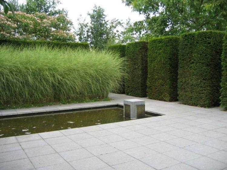 arbuste persistant dans le jardin photos et inspiration in puisable pflanze wasser und g rten. Black Bedroom Furniture Sets. Home Design Ideas