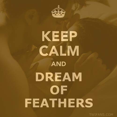 Keep calm and dream of feathers