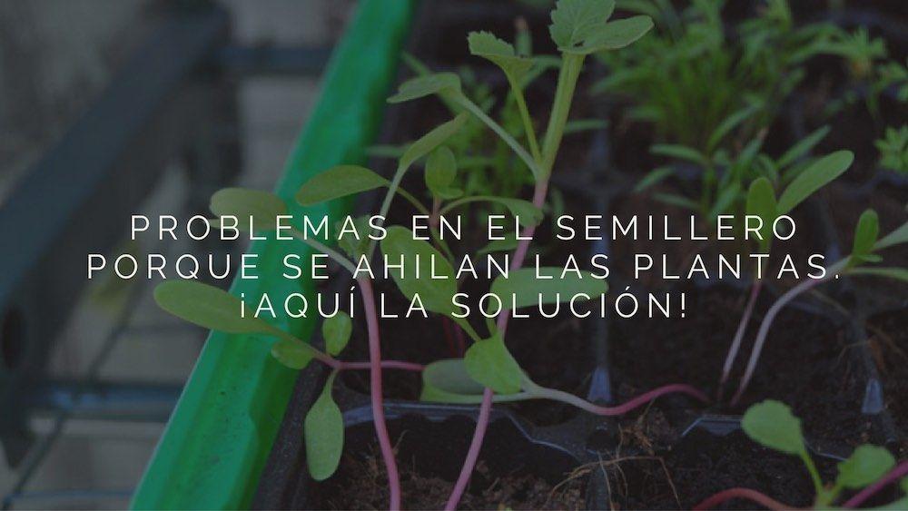 Pin En Agricultura Ecológica