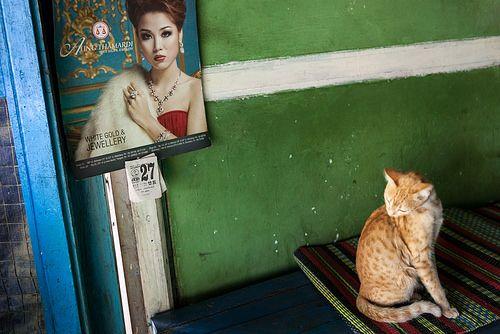 Model, Sagaing
