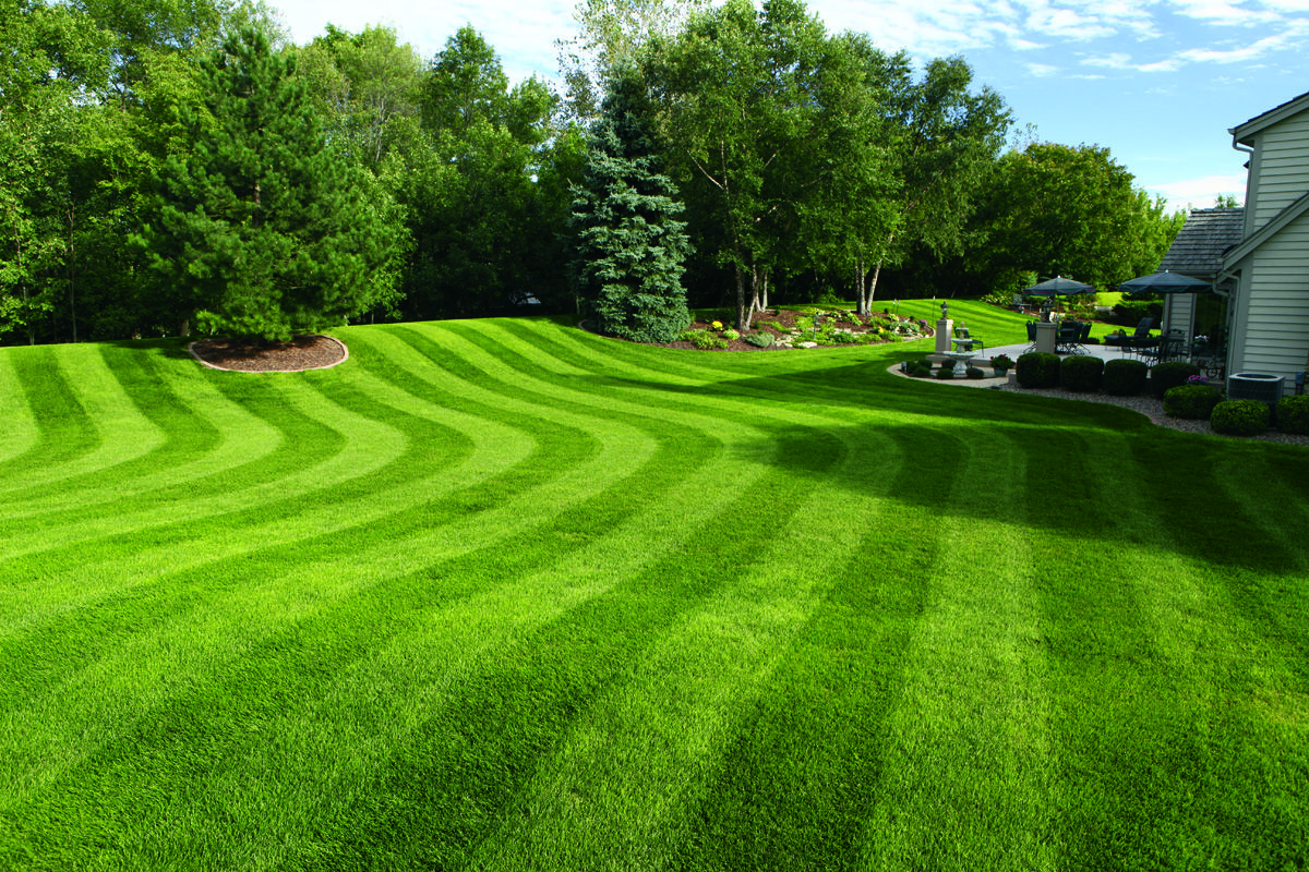 lawn striping: how to mow ballpark grass patterns in your