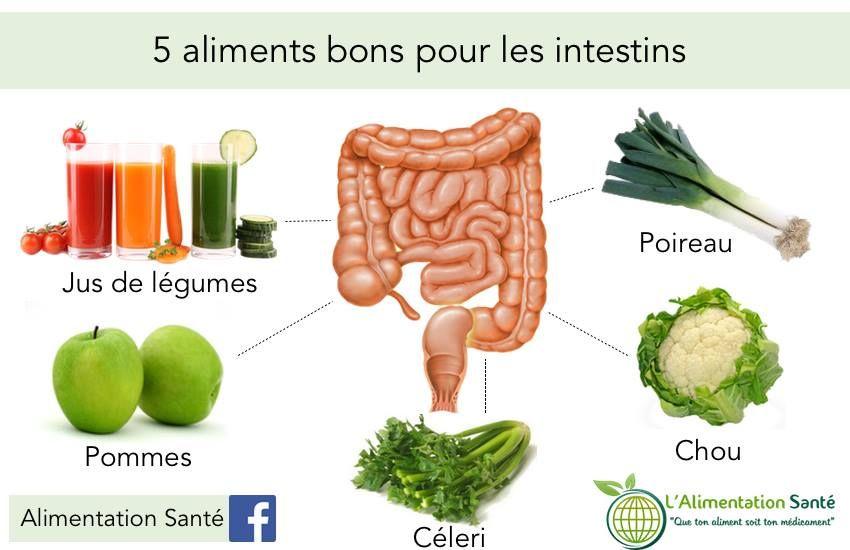 aliment bon pour les intestins