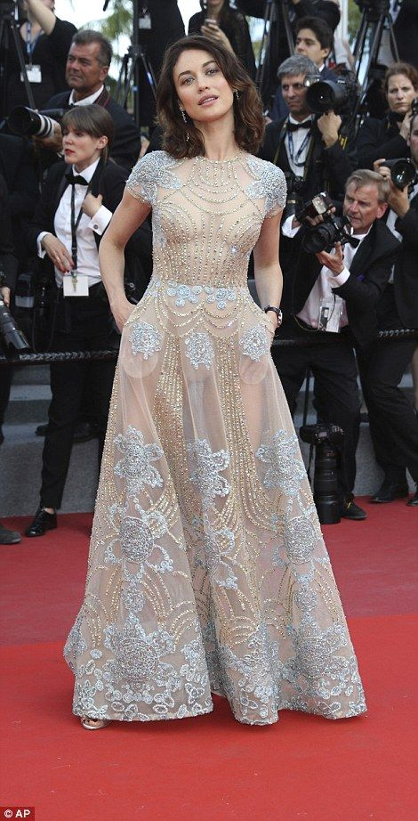 Mary J Blige, 46, wears semi-sheer gown at a Cannes premiere ...