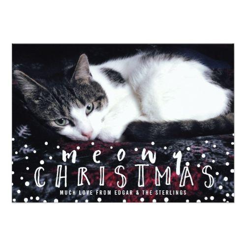 Meowy Christmas Snow Frame Cat Holiday Photo Card