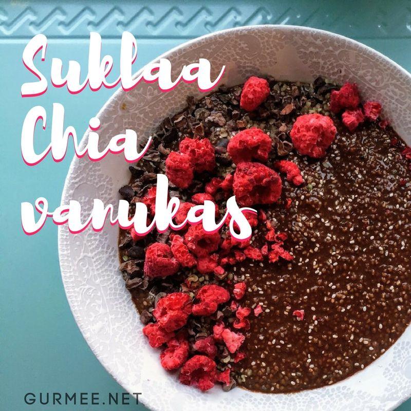 Suklaa-chiavanukas © Hanna Stolt |Gurmee.net