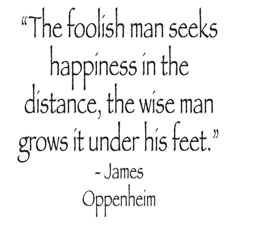 Wisdom Versus Foolishness Quotes Jokes Quotes And Sayings