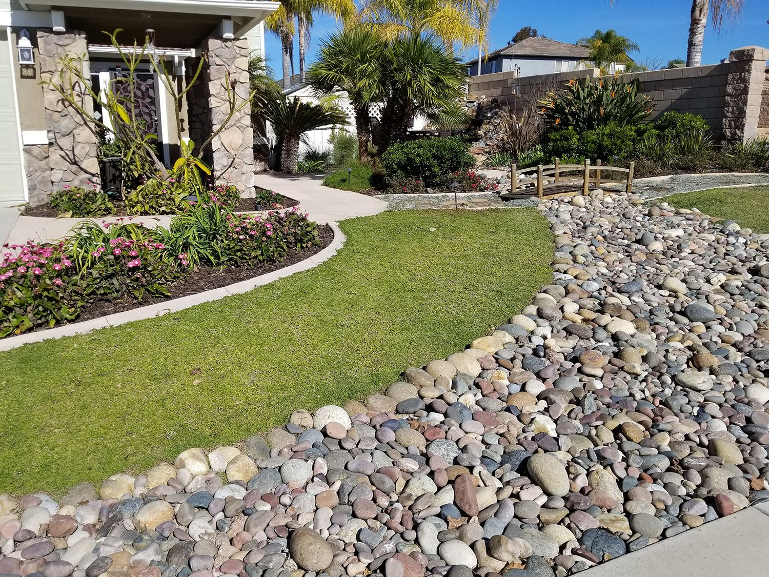 A grass-free front yard with a dry river bed, Kurapia ground